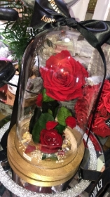 Large Forever Rose Dome