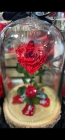 Heart Forever Rose Dome