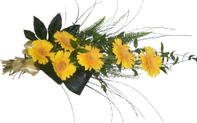 Tied Spray of Gerberas